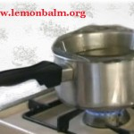LB Infused oil double boiler2